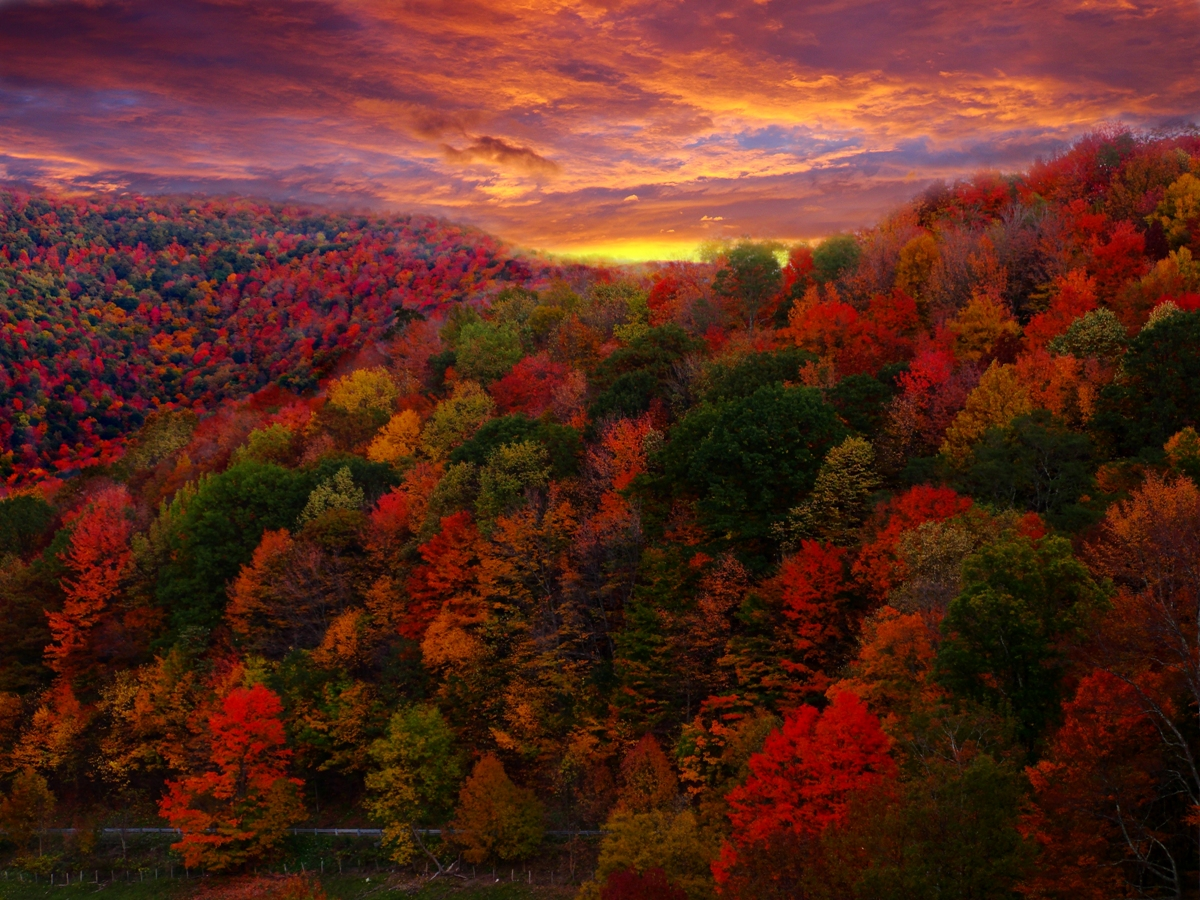 Top 3 Places to Travel to See the Best of Oklahoma Fall Foliage