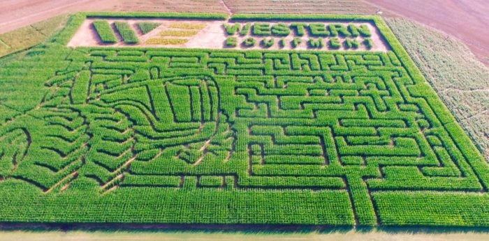 Top Corn Mazes to Visit in Oklahoma